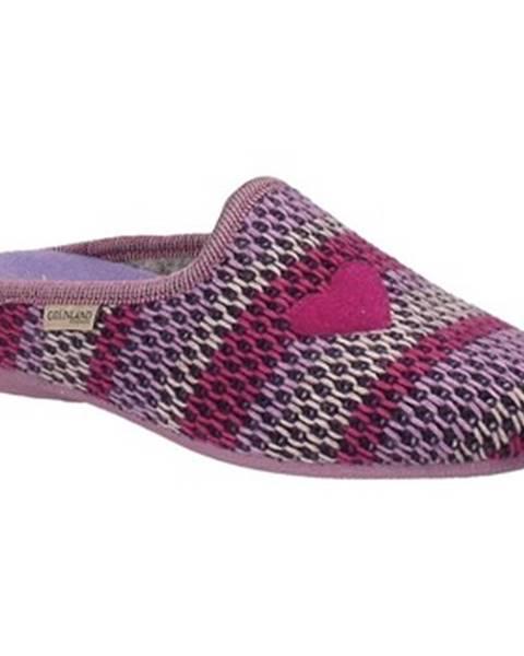 Fialové papuče Grunland
