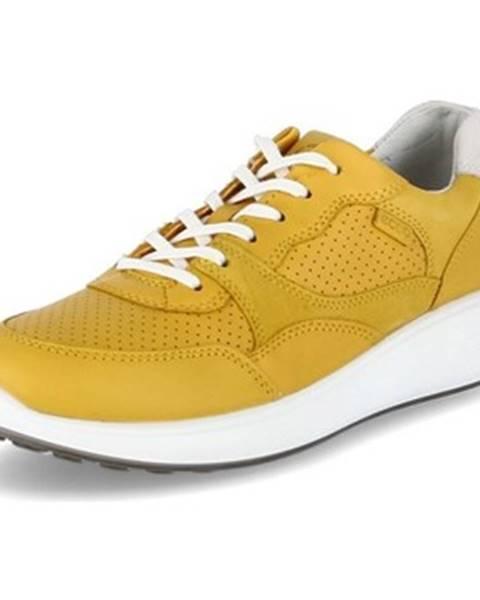 Viacfarebné topánky Ecco